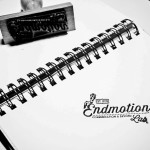 EndMotionLab-12
